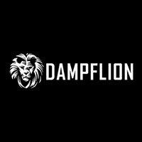 media/image/dampflion.jpg